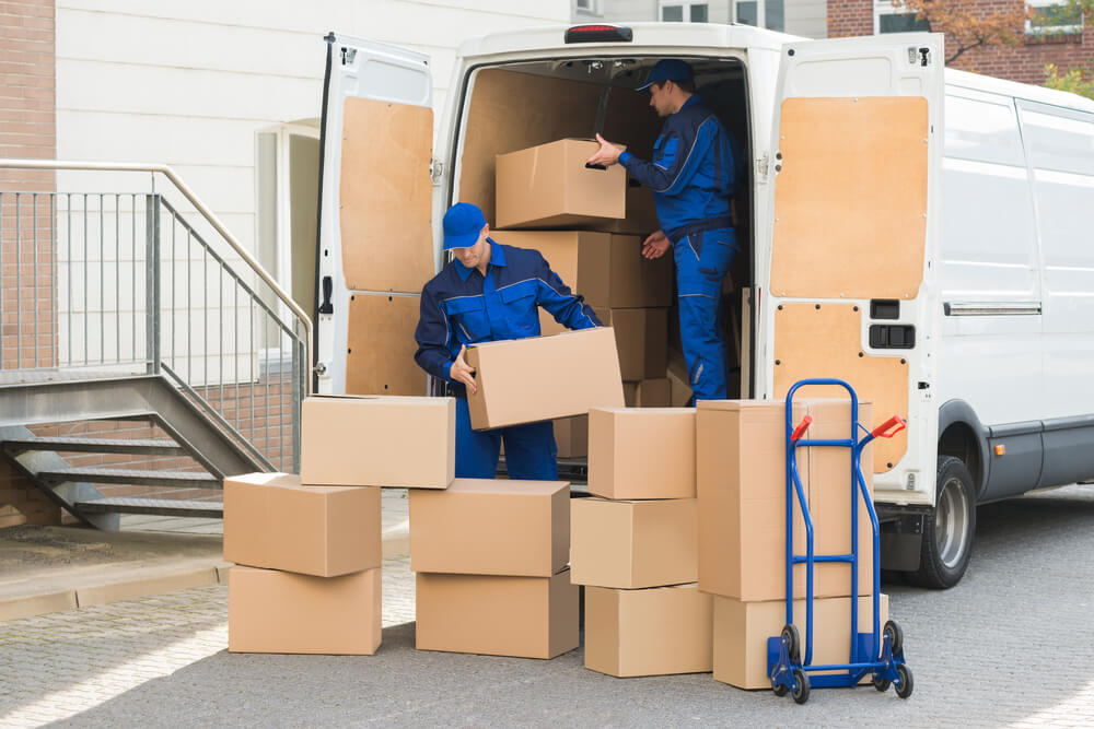 What Is a Removalist?