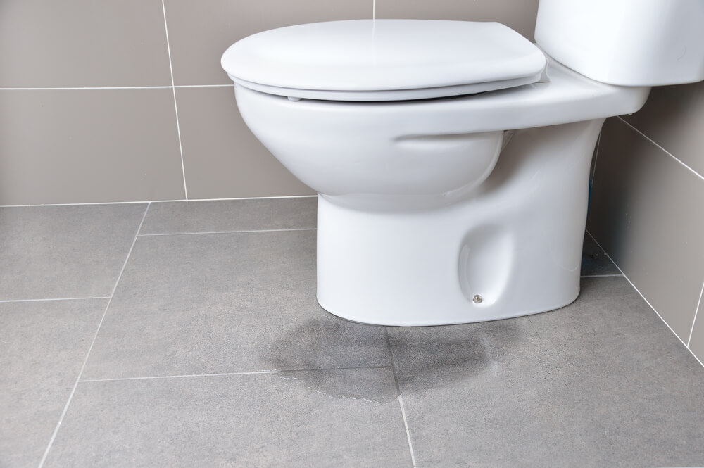 What to Do When Your Toilet is Overflowing